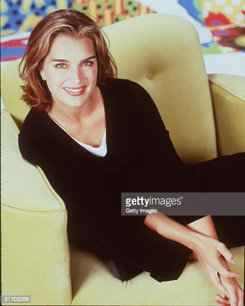 Brooke Shields Stars In The Tv Series 'Suddenly Susan'