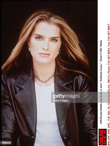 Brooke Shields stars in the tv show 'Suddenly Susan'