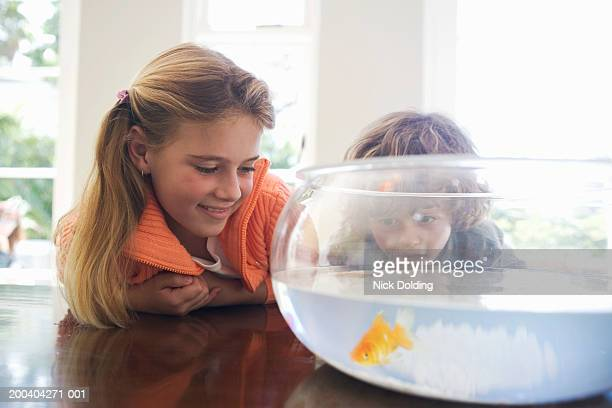 Brother and sister (6-8) looking at goldfish in bowl on table, smiling
