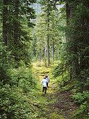Madely Lake, Whistler, British Columbia, Canada, September 2003