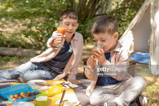 Brothers at picnic
