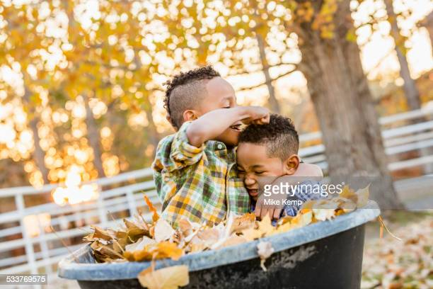 Brothers playing in autumn leaves in wheelbarrow