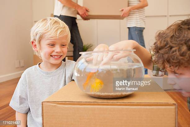 Brothers Veralbern Fisch in fish bowl in neues Haus