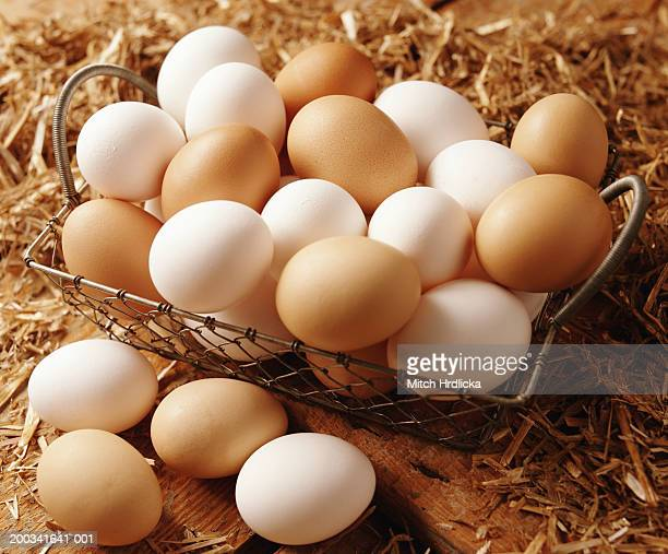 Brown and white eggs in wire basket