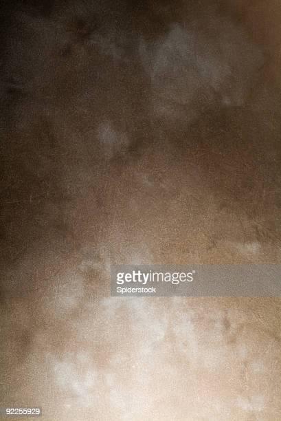 Brown Backdrop