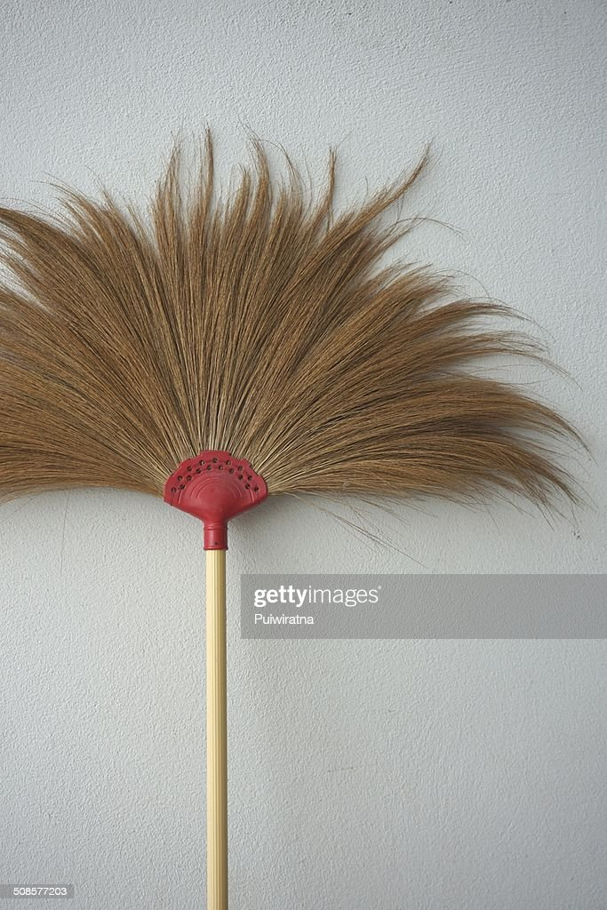 Brown broom : Stock Photo