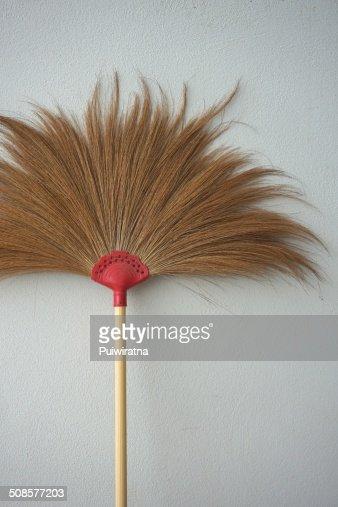 Brown broom : Bildbanksbilder