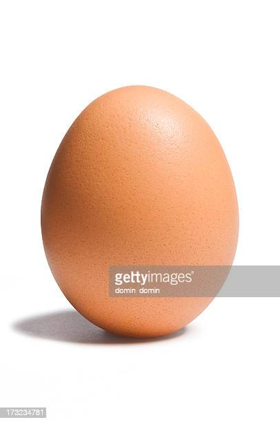 Brown, chicken egg isolated on white, clipping path