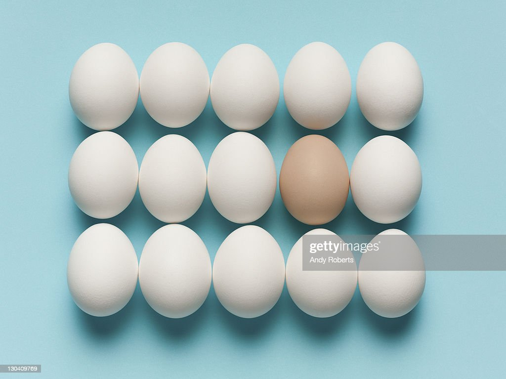 Brown egg with large white eggs : Stock Photo
