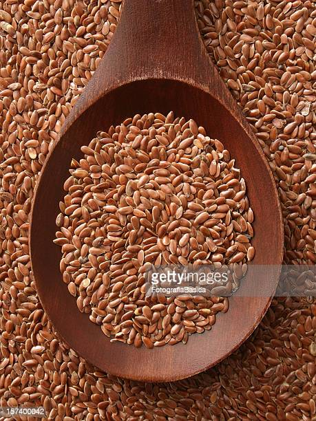 Brown Flachs Samen