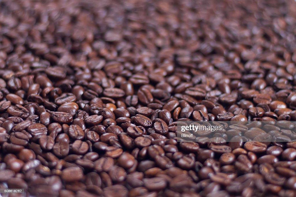 brown roasted arabica coffee : Stock Photo