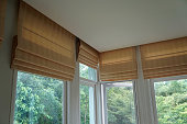 brown blind shade curtain and shadow tree forest mountain background