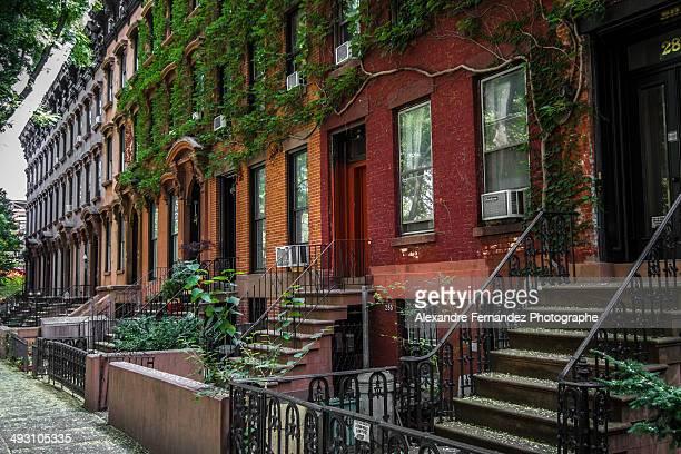 Brownstone in Brooklyn