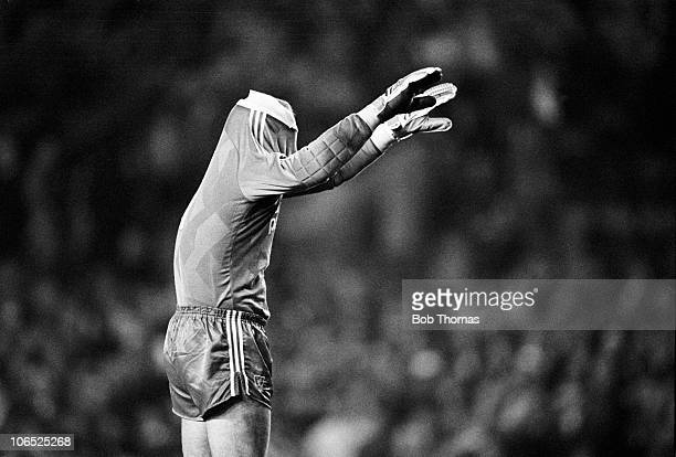 Bruce Grobbelaar Liverpool goalkeeper joking with the fans behind his goal during the Division One football match against Nottingham Forest held at...