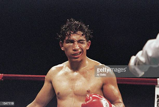A bruised and battered Danny Romero struggles to look at the official with his healthy right eye during the the Bantam match against Ratanachai Sor...