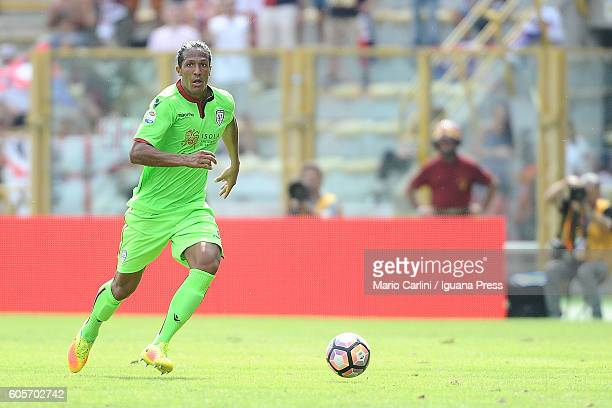 Bruno Alves of Cagliari Calcio in action during the Serie a match between Bologna FC and Cagliari Calcio at Stadio Renato Dall'Ara on September 11...