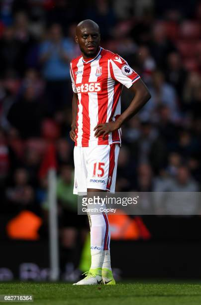 Bruno Martins Indi of Stoke City during the Premier League match between Stoke City and Arsenal at Bet365 Stadium on May 13 2017 in Stoke on Trent...