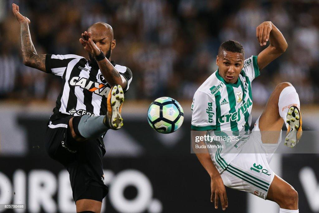 Botafogo v Palmeiras - Brasileirao Series A 2017