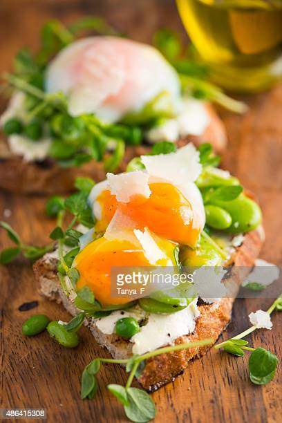 Bruschetta with Cream Cheese, Beans and Pea Sprout and Poached Egg