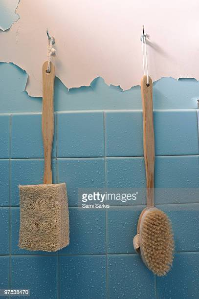 Brushes on wet peeling paint wall in bathroom