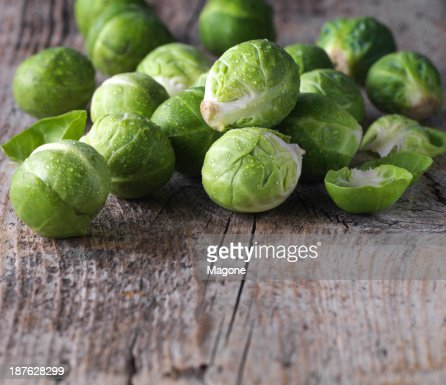 Brussels sprouts cabbage : Stock Photo