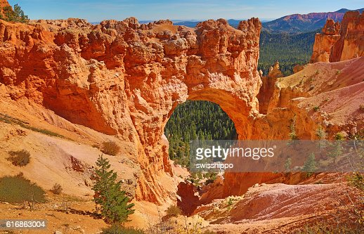 Bryce canyon : Stock Photo