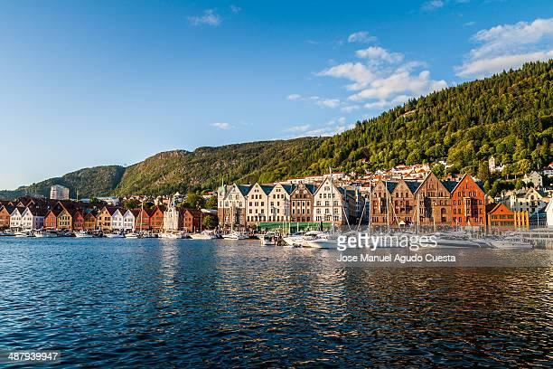 Bryggen View
