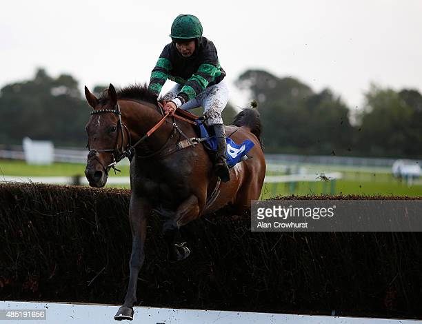 Bryony Frosy riding Rusty Nail clear the last to win The Equitini International Payment Handicap Steeple Chase at Fontwell racecourse on August 25...
