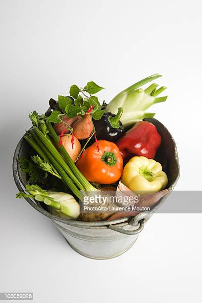 Bucket filled with assorted fresh vegetables