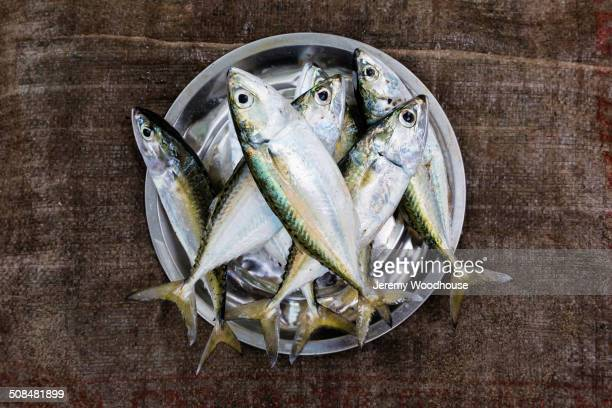 Bucket of fish for sale in market