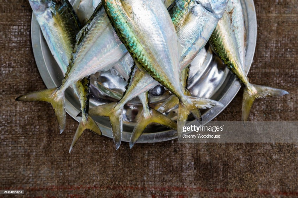 Bucket of fish for sale in market stock photo getty images for Bucket of fish