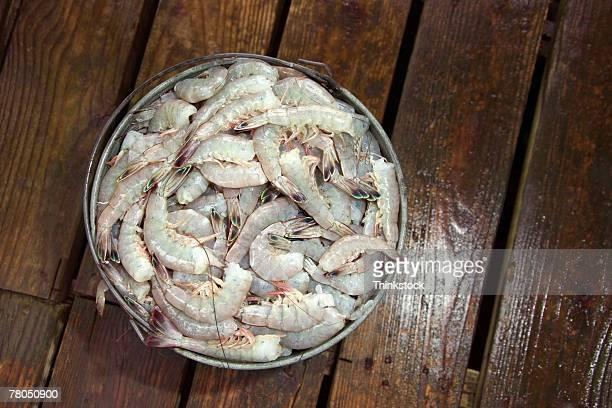 Bucket of shrimp