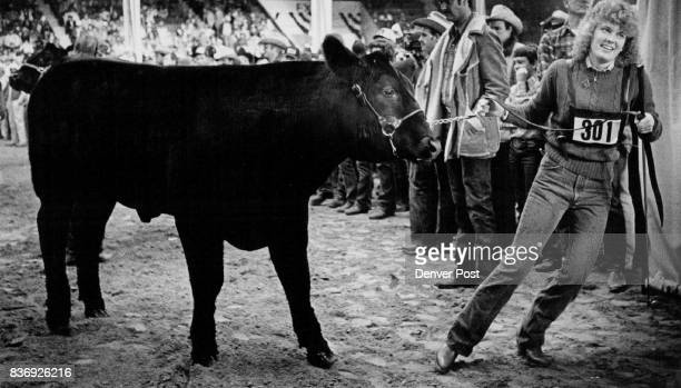 JAN 14 1981 JAN 14 1982 JAN 15 1982 'Buckeye Beauty' a Stubborn Winner The 1279pound black Chianina Angus named Grand Champion Steer at National...