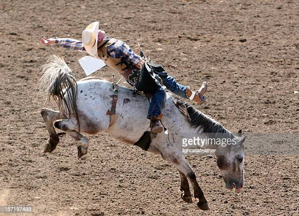 Bucking Bronco at the rodeo in neutral colors