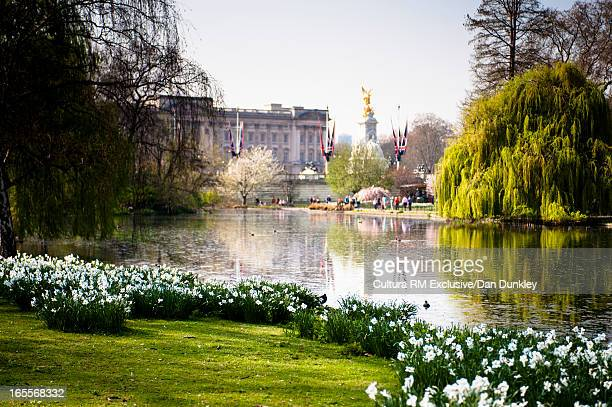 Buckingham Palace with lake in London
