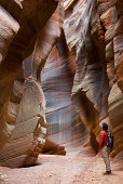 Buckskin Gulch, Paria Canyon-Vermilion Cliffs Wilderness, Arizona, USA