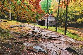The Bud Ogle Cabin sits among the Autumn leaves. The historic cabin is located in The Great Smoky Mountains National Park in Tennessee, USA. Image taken with mobile phone.