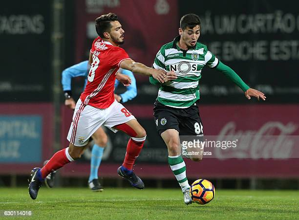 Budag Nasyrov of Sporting CP B with Pedro Rodrigues of SL Benfica B in action during the Segunda Liga match between SL Benfica B and Sporting CP B at...