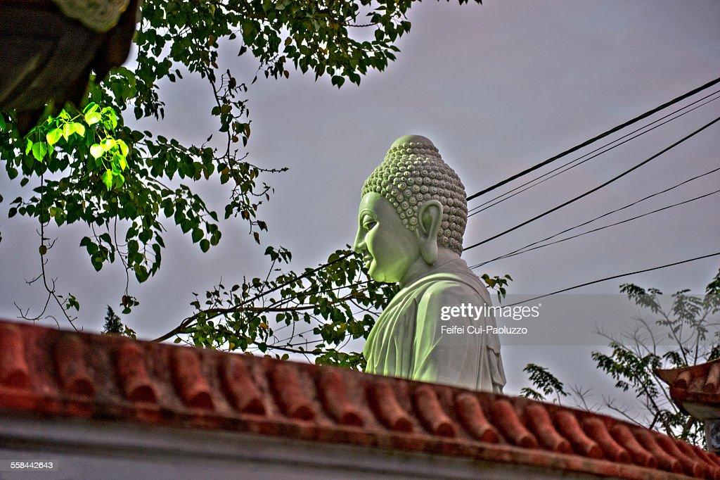 Buddha at Hoi An Quang Nam Province Vietnam