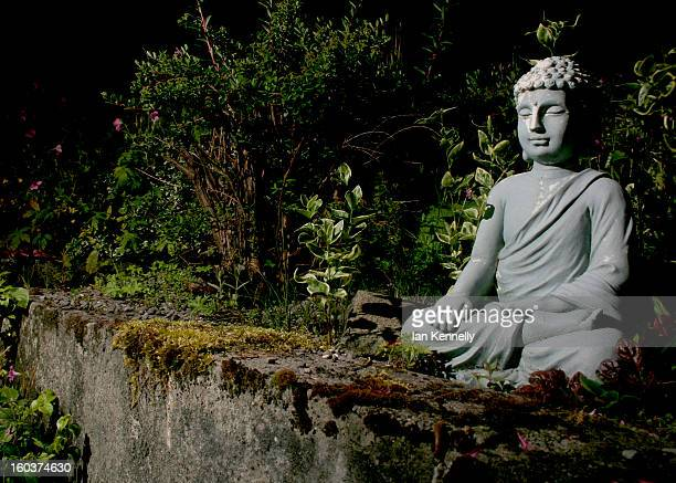 Buddha Statue in a tranquil garden at night time.