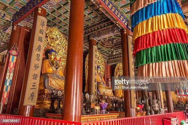 Buddha Statue in Lama Temple, Beijing, China