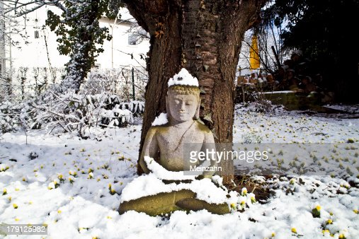 buddha statue meditation in winter : Stock Photo