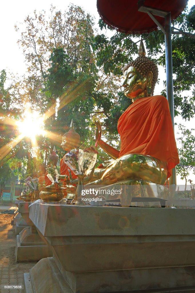Buddha, Thailandia : Foto stock