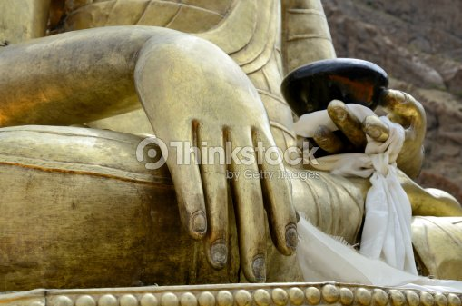 Buddha's hand : Stock Photo