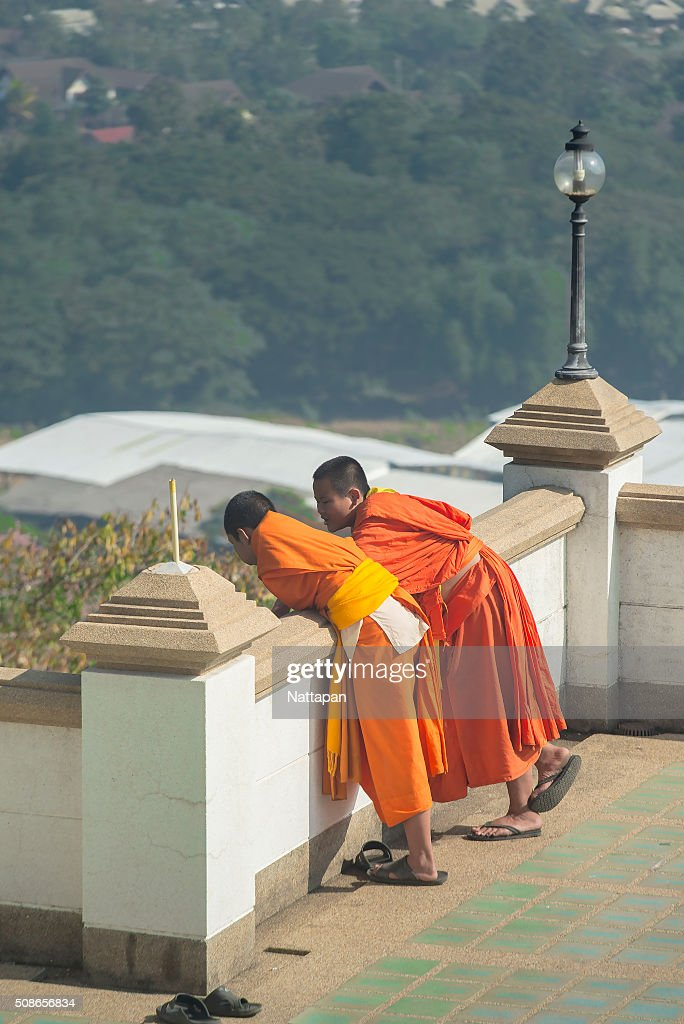 Buddhism novices are relaxing : Stock Photo