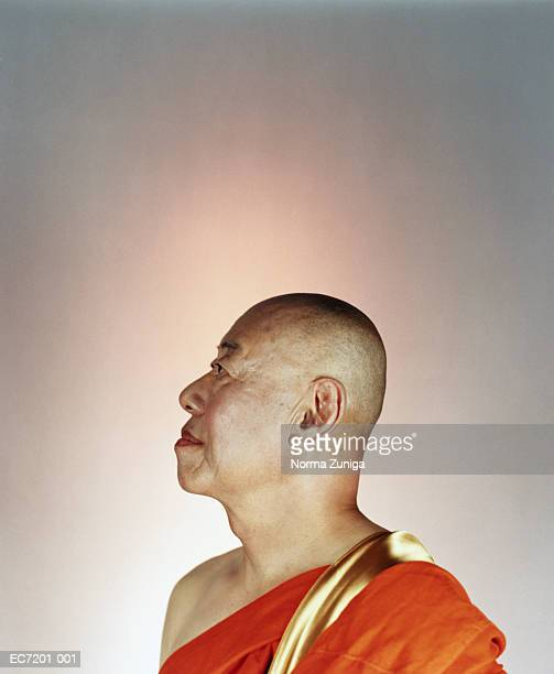 Buddhist monk in orange and gold robe, profile