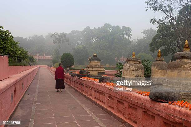 BODHGAYA BIHAR INDIA BODHGAYA BIHAR INDIA Buddhist monk walking around the Mahabodhi temple in a foggy morning Bodh Gaya Bihar India The Mahabodhi...