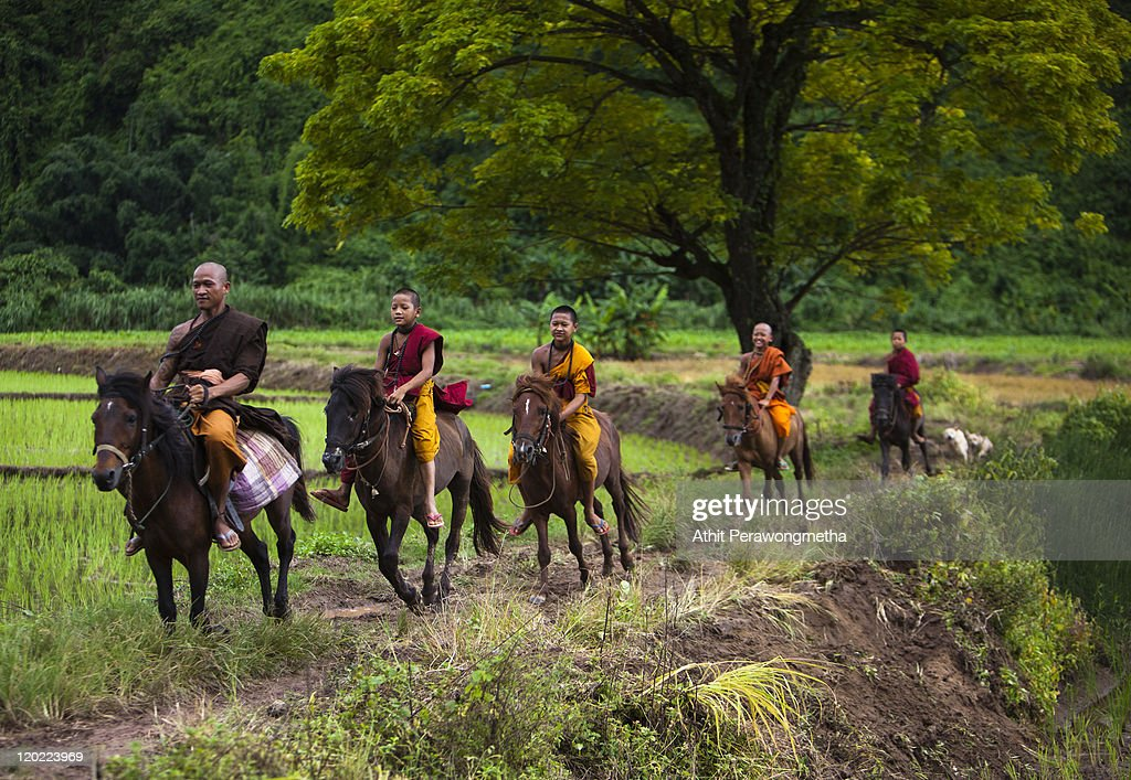 Buddhist Monks from The Golden Horse Monastery ride horses during afternoon duty on August 1, 2011 in Chiang Rai, Thailand. The monastery, founded by former Thai boxing champion Phra Kru Ba Neua Chai who became a Buddhist monk , takes in destitute children, training them in equestrian skills on horses, many of which have been saved from slaughterhouses, and Thai boxing. .