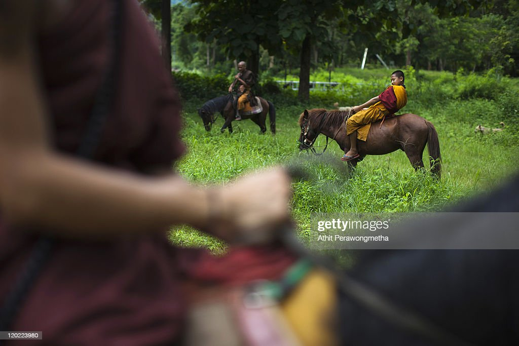 Buddhist monks gather during an afternoon duty at The Golden Horse Monastery at The Golden Horse Monastery at the Golden Horse Monastery (Wat Tam Pa Ar-Cha Thong) on August 1, 2011 in Chiang Rai, Thailand. The monastery, founded by former Thai boxing champion Phra Kru Ba Neua Chai who became a Buddhist monk , takes in destitute children, training them in equestrian skills on horses, many of which have been saved from slaughterhouses, and Thai boxing. .