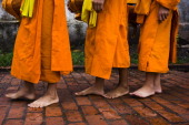 CONTENT] Buddhist monks walking barefooted in the early morning collecting alms From 530 in the morning onward silent lines of saffronclad monks walk...